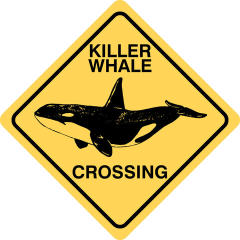 Killer Whale Crossing