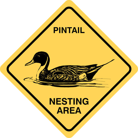 Pintail Nesting Area