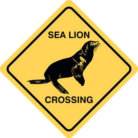 Sea Lion Crossing