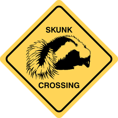 Skunk Crossing