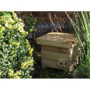 Bumble Bee Nesting Box