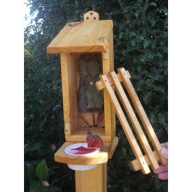 Buterfly Shelter Feeder