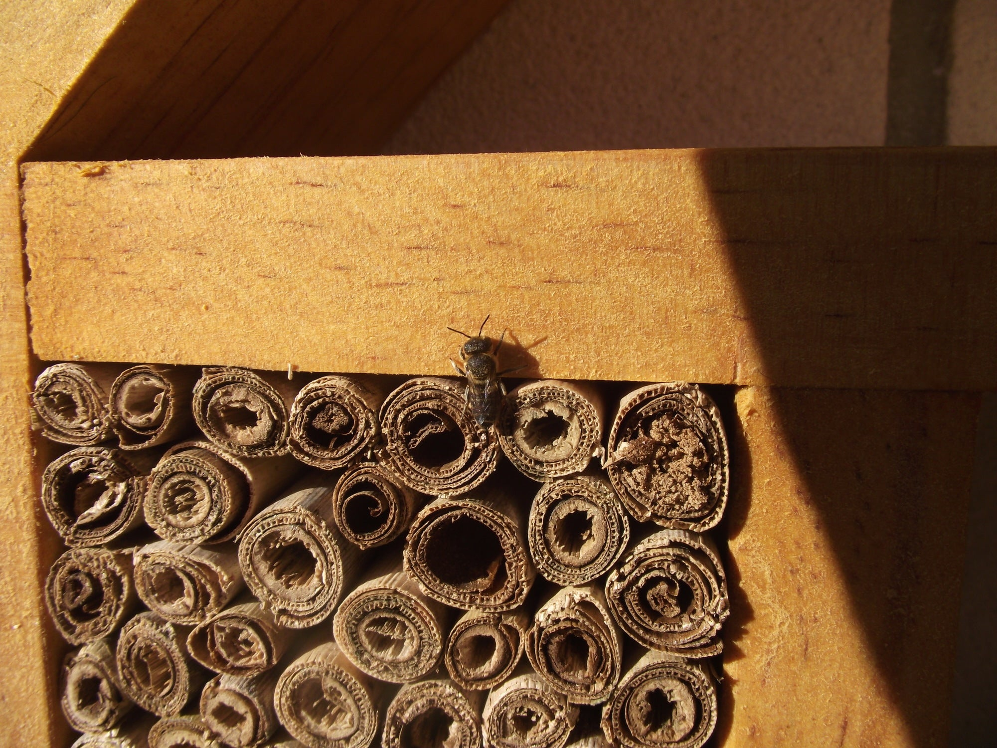 Insect Hotel Creative Woodcraft