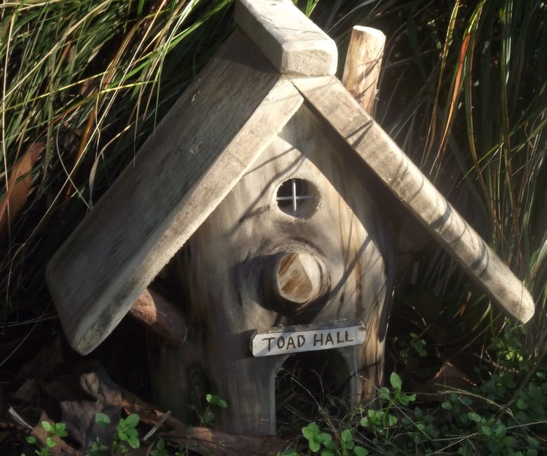 toad_house_3