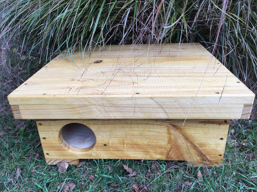 Hedgehog Box Feeder & Shelter - Creative Woodcraft New Zealand