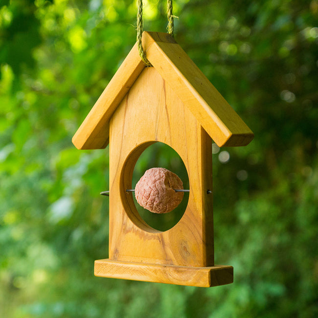 Apple Suet Bird Feeder