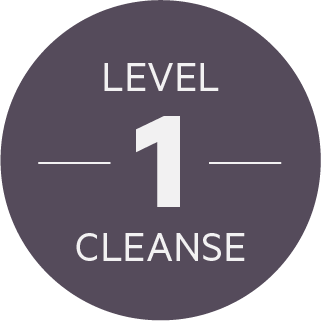 Level 1 Cleanse