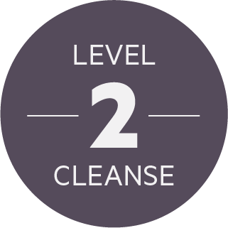Level 2 Cleanse