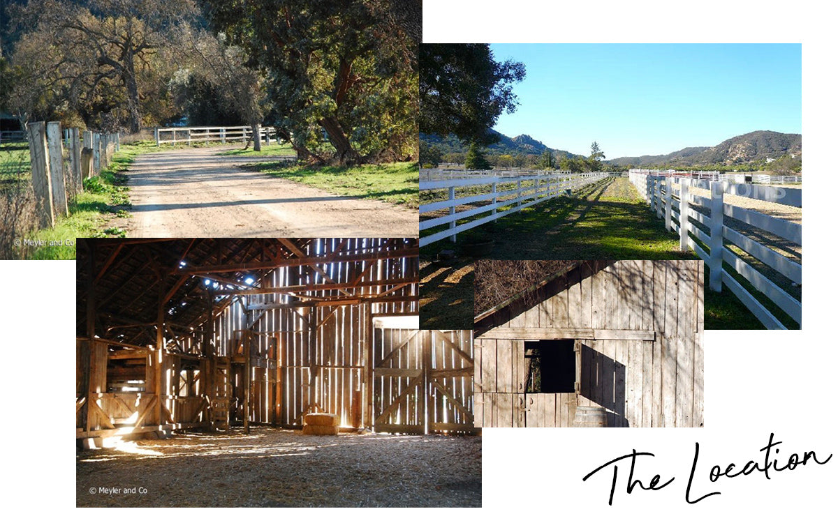 Moodboard Monday: California Countryside