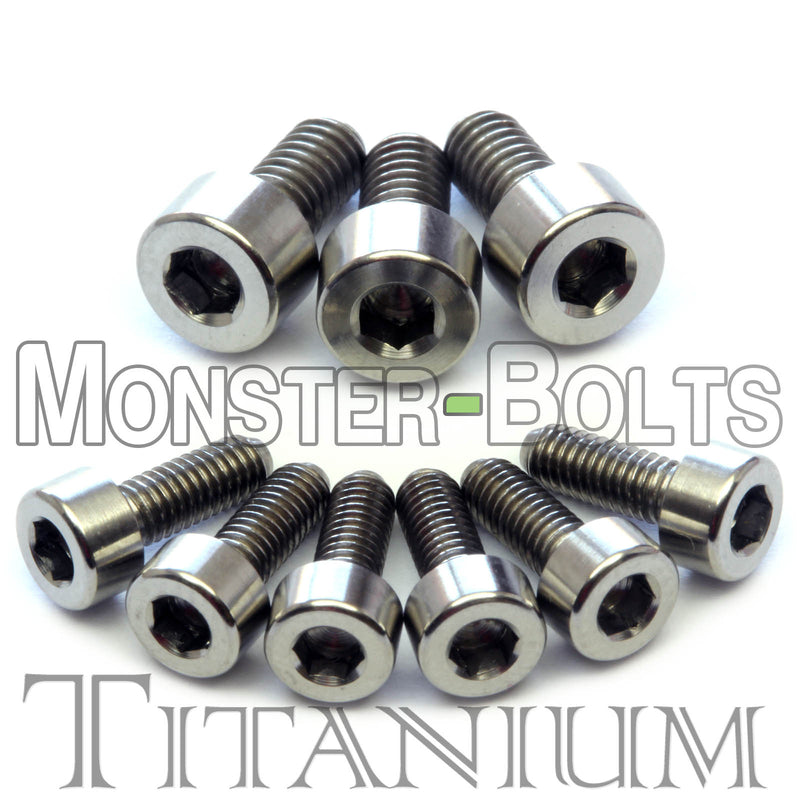 Titanium Guitar Locking Nut and Saddle Intonation Screws - Floyd Rose Tremolo - Monster Bolts