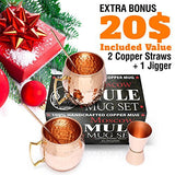 Moscow Mule Copper Mugs - Set of 2 - 100% HANDCRAFTED - Pure Solid 16oz Copper Mugs Gift Set with BONUS: Highest Quality Cocktail Copper Straws and Jigger!