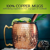 Spirit Valley Moscow Mule Copper Mugs and Straws with Bonus Jigger, Pure Solid Copper Cups, Gift Set of Two 16 Oz Cups, 2 Recipes EBooks Included, Handmade Hammered Mugs