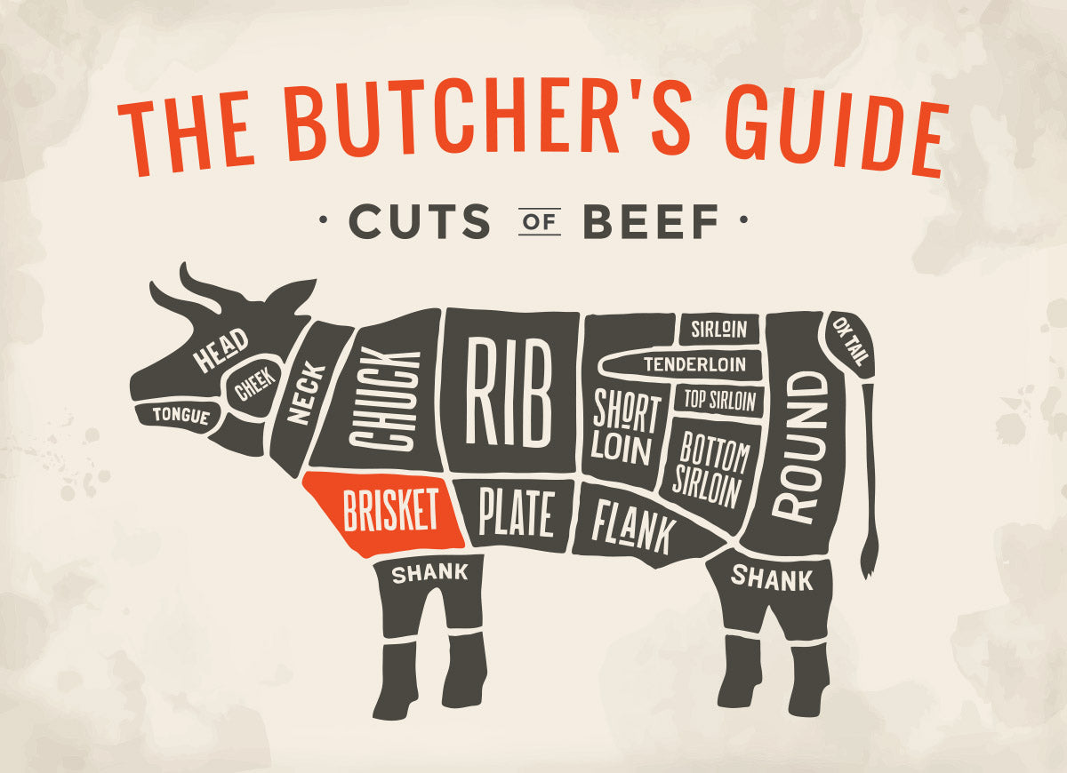 Chart illustrating where each cut of beef comes from on a cow
