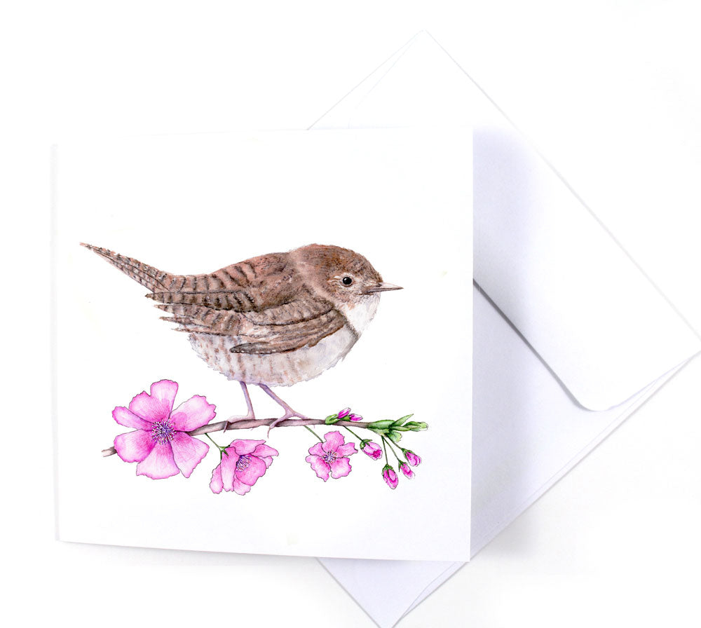 House Wren & Cherry Blossom Watercolor Greeting Card