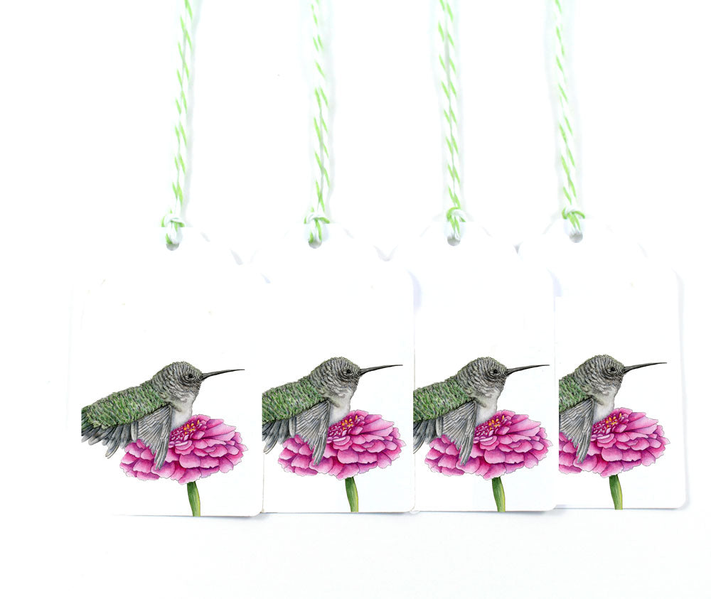 Hummingbird on Gerber Daisy Gift Tags