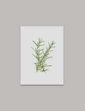 Watercolor Rosemary Original Painting