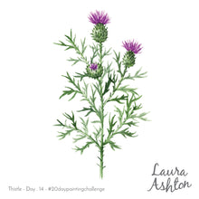 Flowering Thistle Original Painting