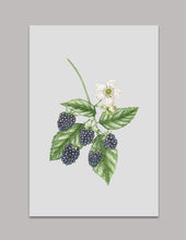 Blackberry Original Painting