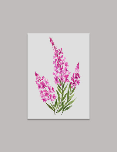 Fireweed Original Painting