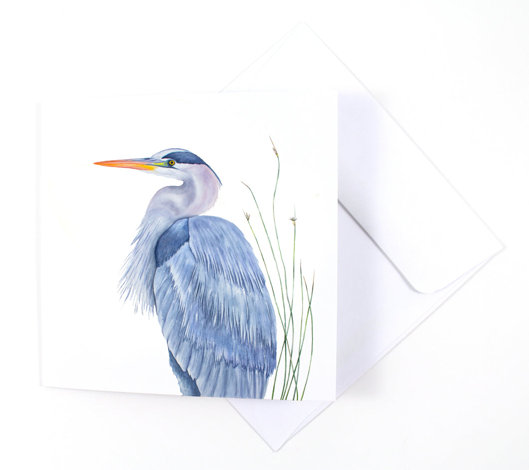 Great Blue Heron Watercolor Greeting Card