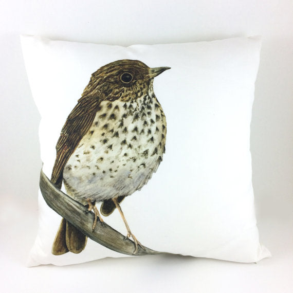 Watercolor Hermit Thrush Bird Throw Pillow Cover