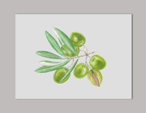 Jojoba Original Painting