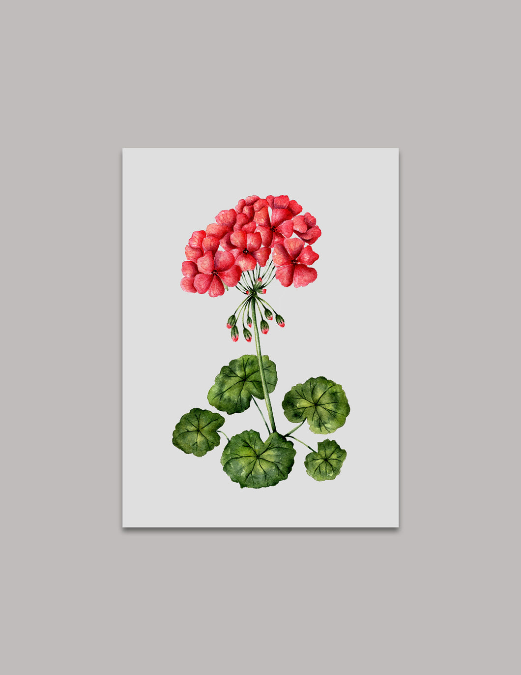 Red Geranium Original Painting