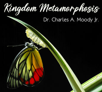Kingdom Metamorphosis