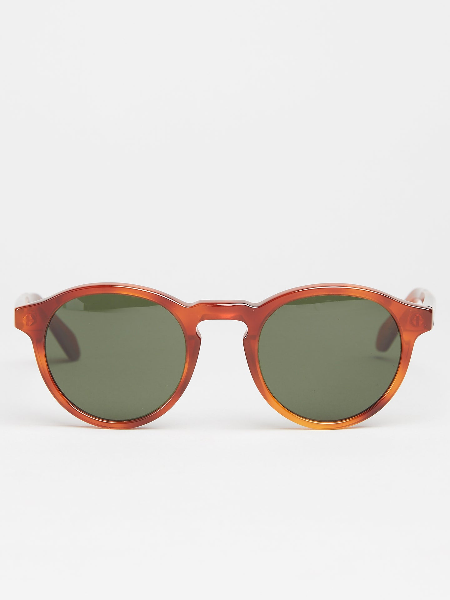 Edwardson Princeton Sun Light Tortoise