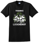 Brolly T Shirt Training To Go Legendary Dragon Ball Z Anime Unisex Tee Shirts