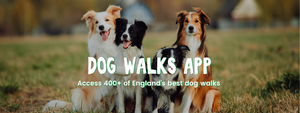 NEW! Dog Walks App by Countryside Books