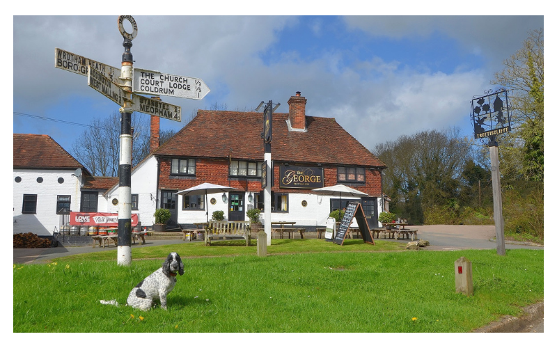 A-Z of dog friendly pubs in Kent