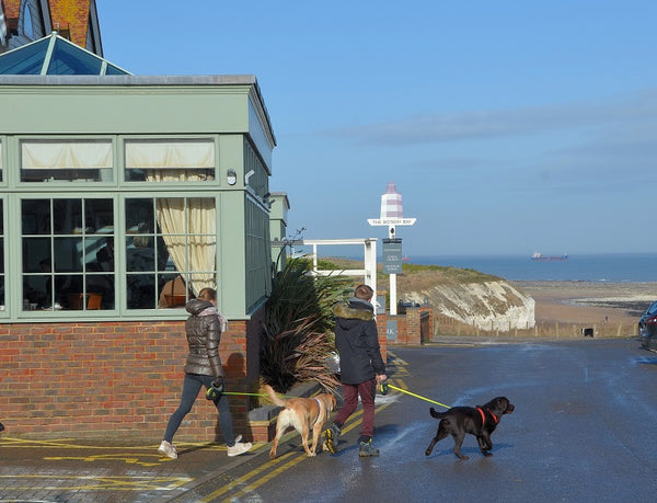 Botany Bay Hotel, Kent - Dog Friendly Pub
