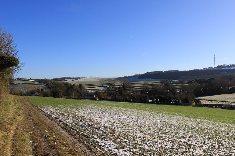 Hampshire Walking Route - Kingsclere & Watership Down
