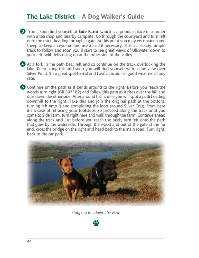 Lake District A Dog Walker's Guide walk