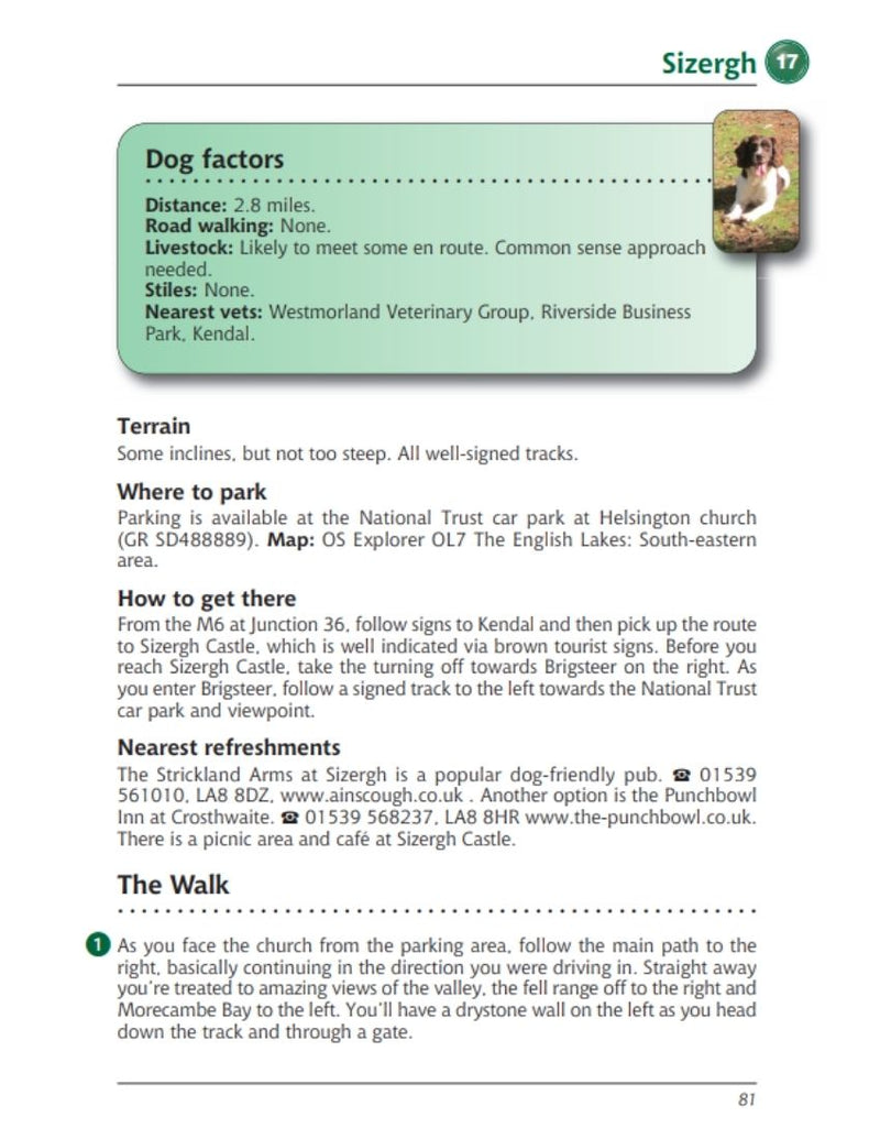 Lake District A Dog Walker's Guide Sizergh walk