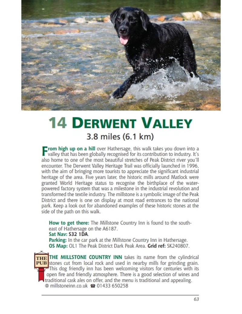 Derbyshire & the Peak District Dog Friendly Pub Walks Derwent Valley walk