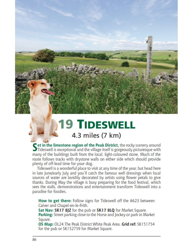 Derbyshire & the Peak District Dog Friendly Pub Walks Tideswell walk