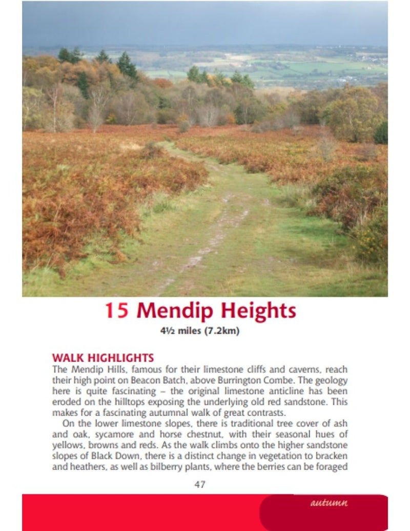 Bristol & Bath Year Round Walks Mendip Hills Autumn walk