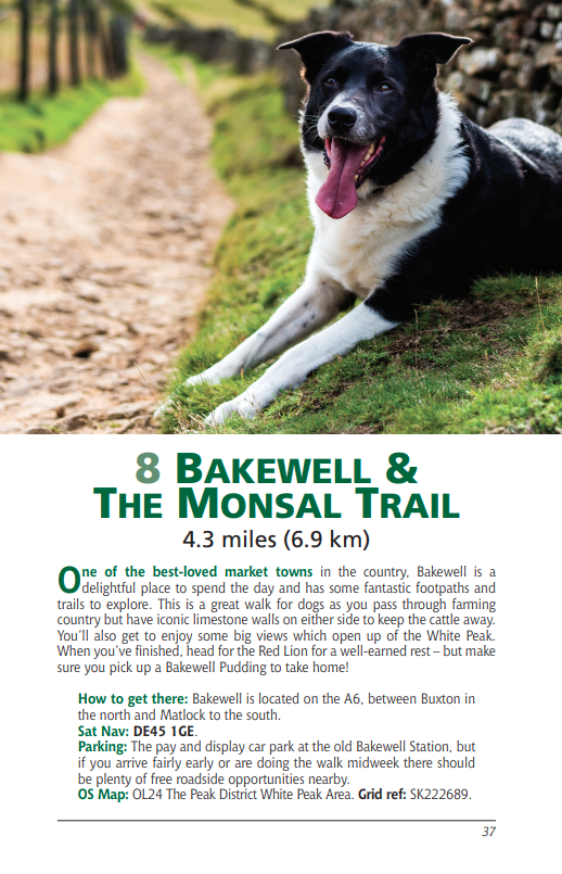 Derbyshire & the Peak District Dog Friendly Pub Walks Bakewell & Monsal Trail walk