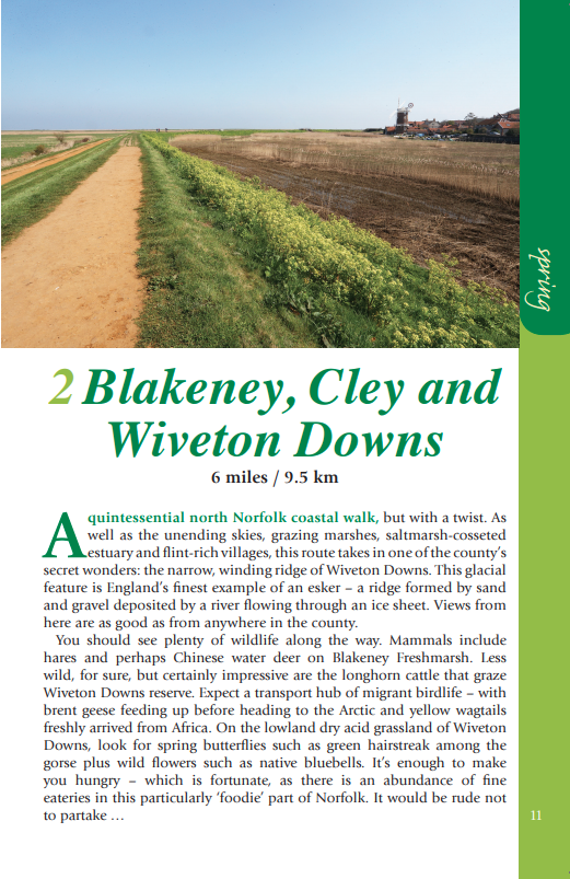 Norfolk Year Round Walks Blackeney, Cley and Wiveton Downs walk