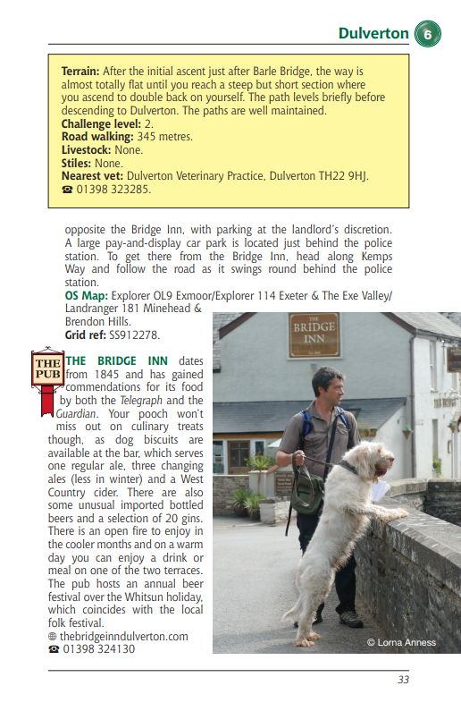 Somerset Dog Friendly Pub Walks Dulberton walk the Bridge Inn