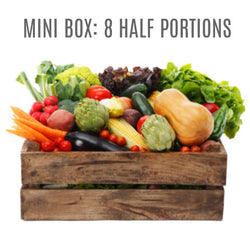 Wensleydale Fresh Organic Vegetable Box - MINI (8 HALF PORTIONS)