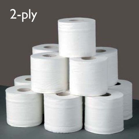 Environmentally Friendly Toilet Paper 10 x 2-ply