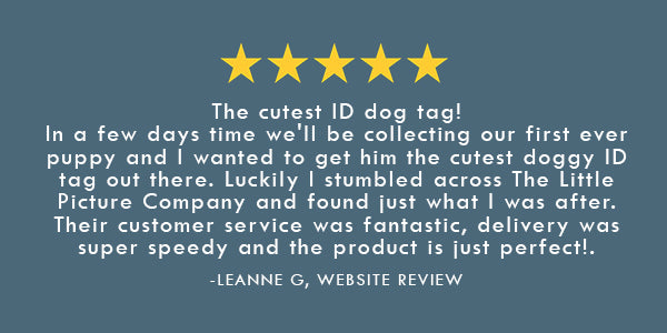 Pet Id Tag Review