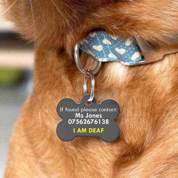 Special Needs Pet ID Tag for Dogs