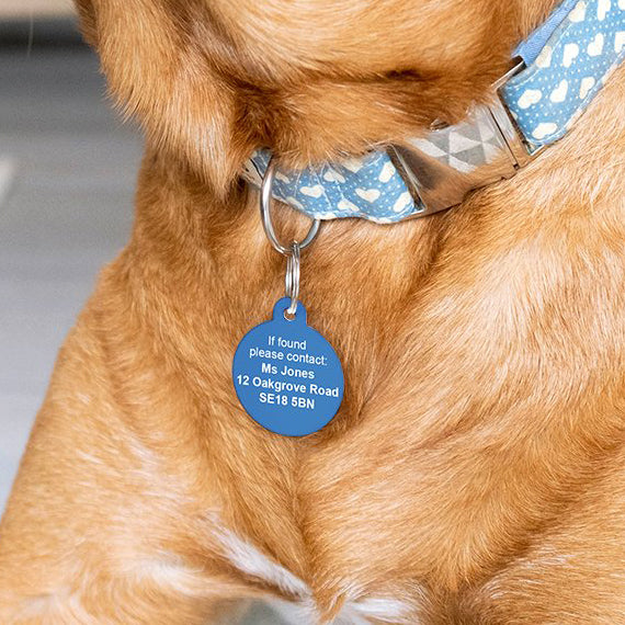 Hello my name is pet dog ID tag back
