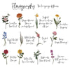 floriography flower meanings