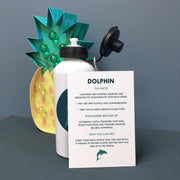 Children's Personalised 'Ocean Defender' Dolphin Waterbottle