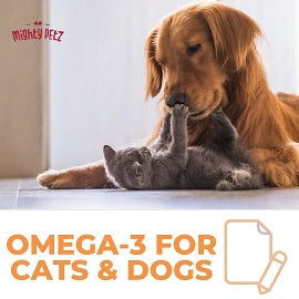 Omega-3 Supplements for Dogs and Cats